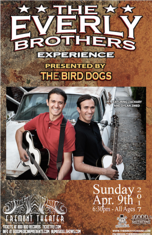 Bird dogs - Web
